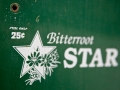 Bitterroot Star