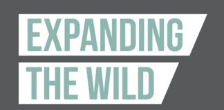Expanding The Wild